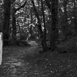 La sposa, foto e elaboraz. grafica Marcello Comitini