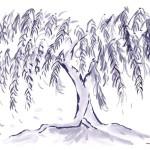Trisha Sugarek, weeping willow, 2011
